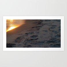 sunset sandpiper Art Print