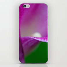 The Beauty Within iPhone & iPod Skin