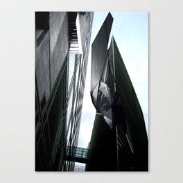 MS001 Canvas Print