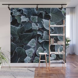 Hoarfrost Ivy Leaves Wall Mural