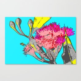 Blue Gumnut Canvas Print