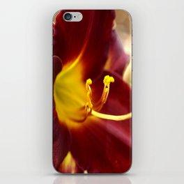 Velveteen Two iPhone Skin