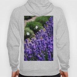 Lavender Love Hoody