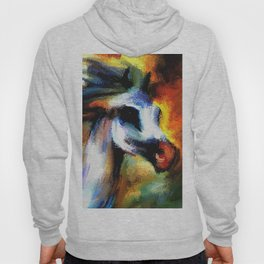 Rainbow Horse Hoody