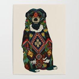sun bear almond Poster