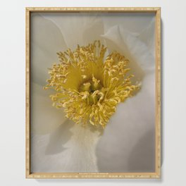 Centered - White Peony Flower Serving Tray