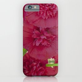 Hollyhock all in a row iPhone Case