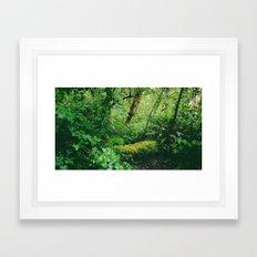 Site No. 26 Framed Art Print