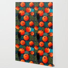 Pumpkins and Black Cats Wallpaper
