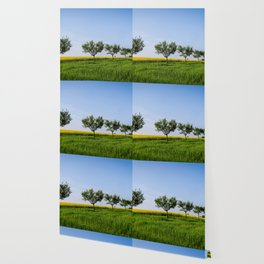 GandY 05 Wallpaper