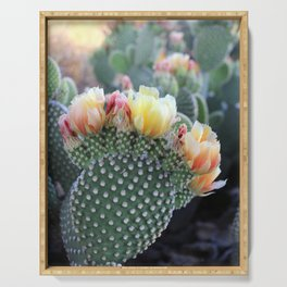 Cactus Flower Series: Yellow Pink Blooms Serving Tray
