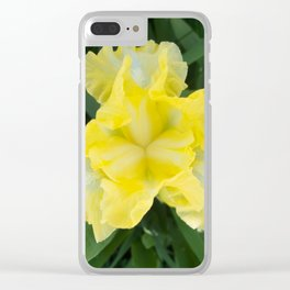 Yellow Iris by Teresa Thompson Clear iPhone Case