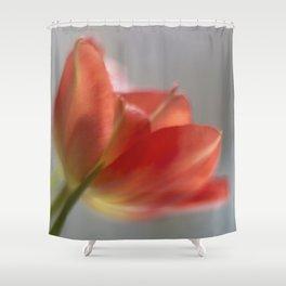 Holy Grail? Shower Curtain