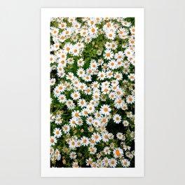 Flower Photography by Bea Dm harris Art Print