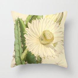 Strophocactus testudo Throw Pillow