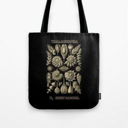 """""""Thalamorpha"""" from """"Art Forms of Nature"""" by Ernst Haeckel Tote Bag"""