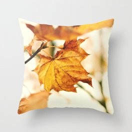A Fall Like This Throw Pillow