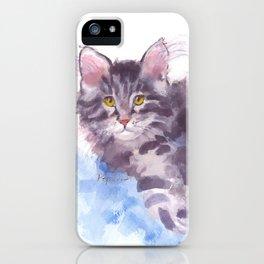 Azure Purr iPhone Case