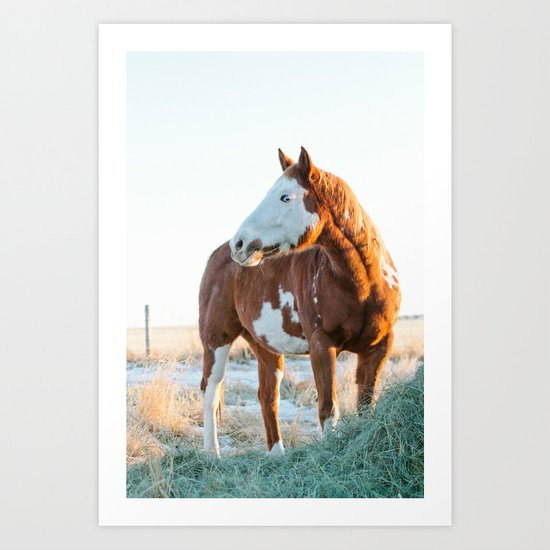 Pferd Art Print
