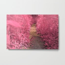 Windy Goose Creek Trail - Tickle Me Pink Metal Print
