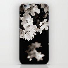 Little Whites ~ No.1 iPhone & iPod Skin
