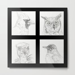 Birds 1 Metal Print