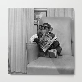 Dad on a Good Day - Chimpanzee Father reading the New York Times black and white photograph Metal Print