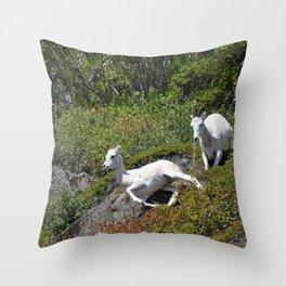 Ewe & Lamb Dall Sheep - II Throw Pillow