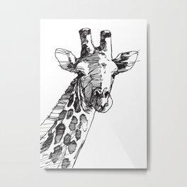 Giraffe - M Metal Print