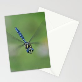 Smiling Dragonfly Stationery Cards