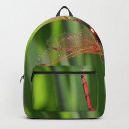 Red Skimmer or Firecracker Dragonfly Closeup Backpack