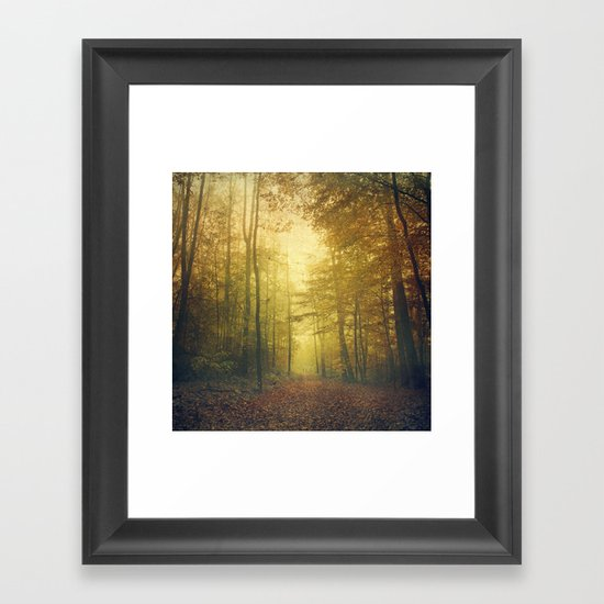 fall morning forest Framed Art Print