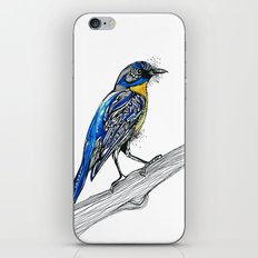 Bird Inspiration: Tickell's Blue Flycatcher iPhone & iPod Skin