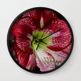 Red Amaryllis by Teresa Thompson Wall Clock