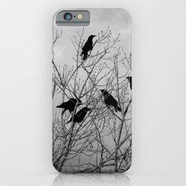 Murder Of Crows - Three iPhone Case