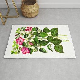 Pink Italian Hibiscus flowers, vintage print Rug