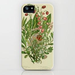 061-SCOTTISH MENZIESIA, IRISH MENZIESIA, TRAILING AZALEA, MARSH ANDROMEDA, AUSTERE STRAWBERRY TREE, BLACK BEAR-BERRY, RED BEAR-BERRY iPhone Case
