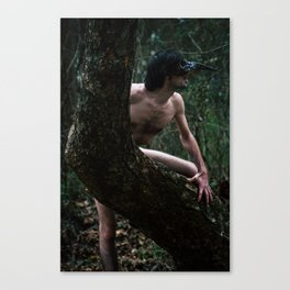 King or Crow Canvas Print
