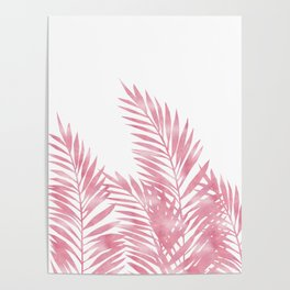 Palm Leaves Pink Poster