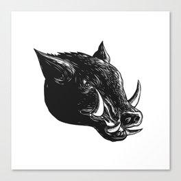 Razorback Wild Boar Scratchboard Canvas Print