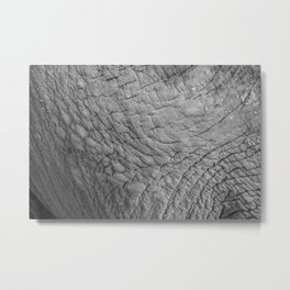 Wildlife Collection: Elephant Skin Metal Print