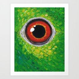 Amazon parrot eye Art Print