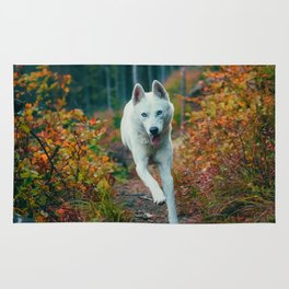 Happy Wolf in Forest (Color) Rug