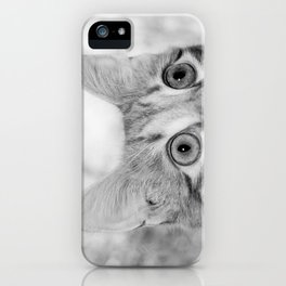 What's New KittyCat iPhone Case