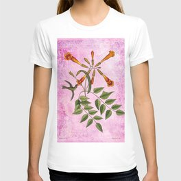 Hummingbird with Trumpet Vine, Vintage Natural History Collage T-shirt