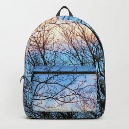 Black Lines Backpack