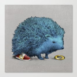Sonic (color option) Canvas Print