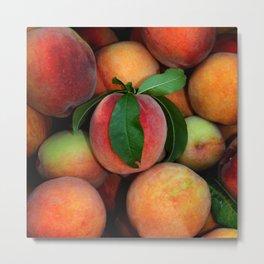 Peachy Peaches Metal Print