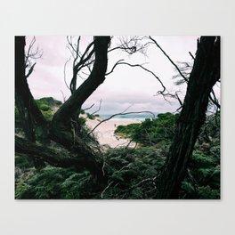 Ocean View, Squeaky Beach, Victoria, Australia Canvas Print