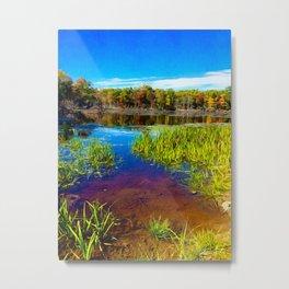 Secret pond Metal Print